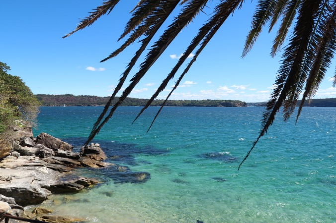 Palm Cove, Sydney